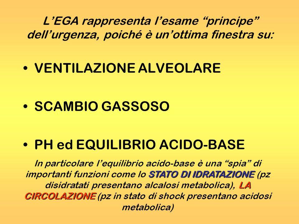 VENTILAZIONE ALVEOLARE SCAMBIO GASSOSO PH ed EQUILIBRIO ACIDO-BASE