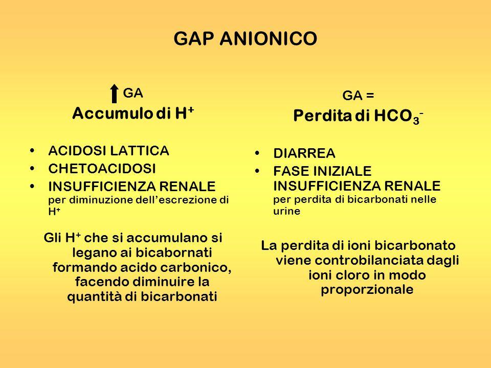 GAP ANIONICO Accumulo di H+ Perdita di HCO3- GA GA = ACIDOSI LATTICA