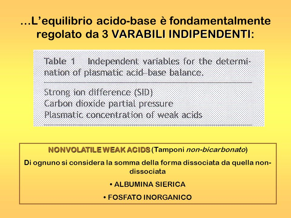 NONVOLATILE WEAK ACIDS (Tamponi non-bicarbonato)