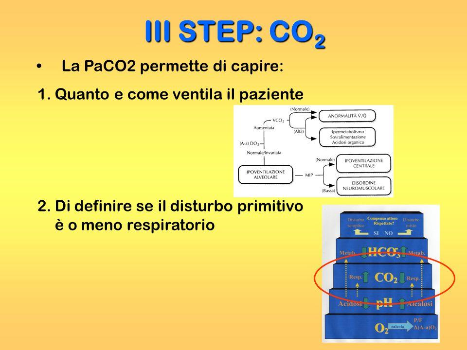 La PaCO2 permette di capire: