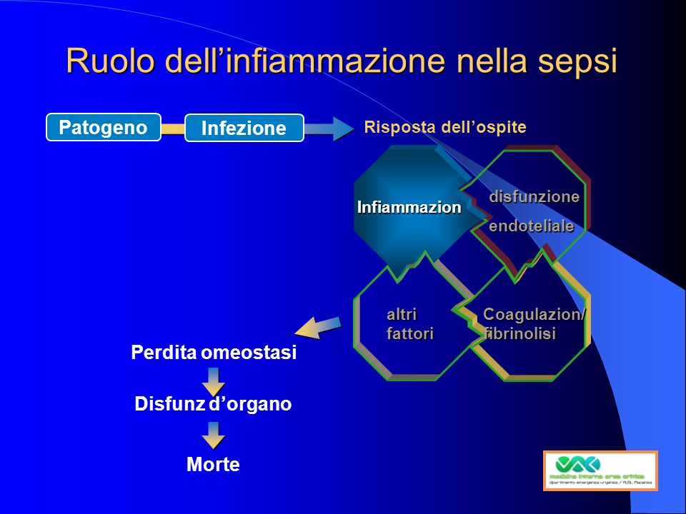 Ruolo dell'infiammazione nella sepsi
