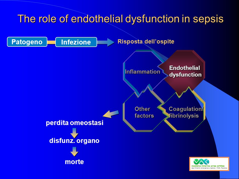 The role of endothelial dysfunction in sepsis