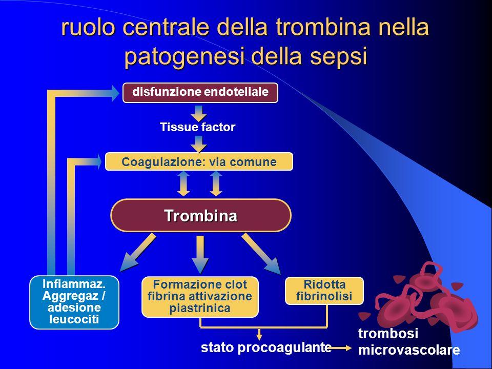 ruolo centrale della trombina nella patogenesi della sepsi