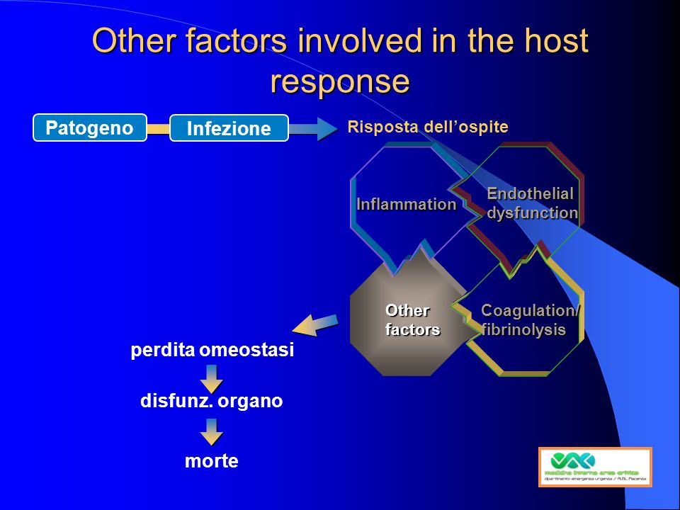 Other factors involved in the host response