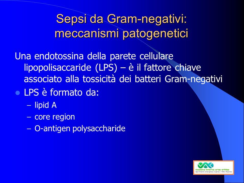 Sepsi da Gram-negativi: meccanismi patogenetici