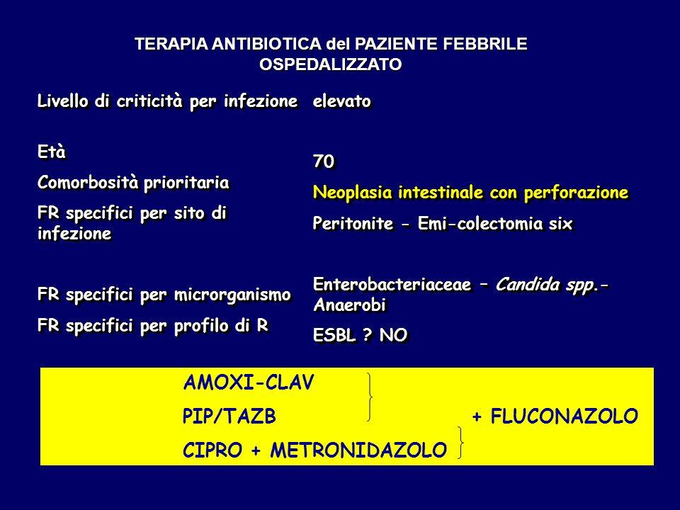 TERAPIA ANTIBIOTICA del PAZIENTE FEBBRILE OSPEDALIZZATO