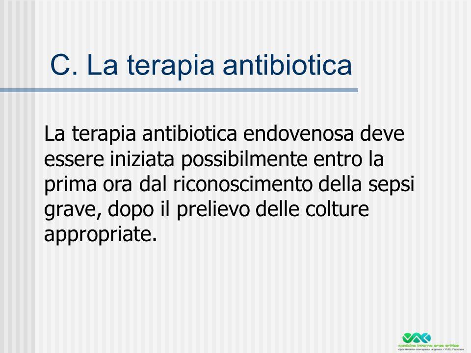 C. La terapia antibiotica