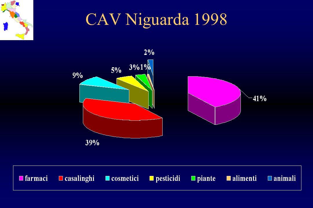 CAV Niguarda 1998