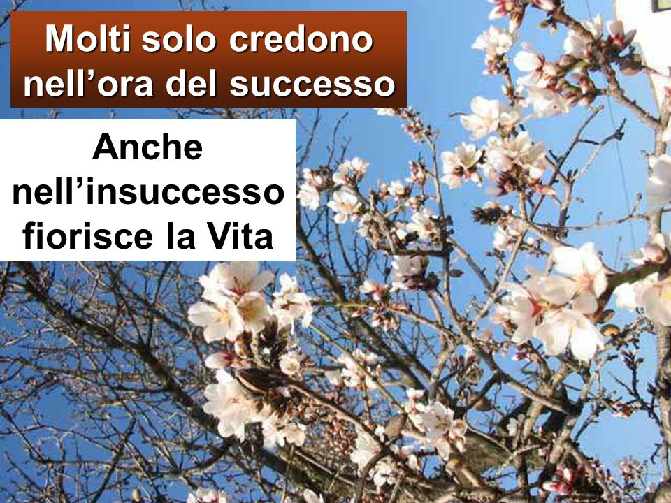 Molti solo credono nell'ora del successo