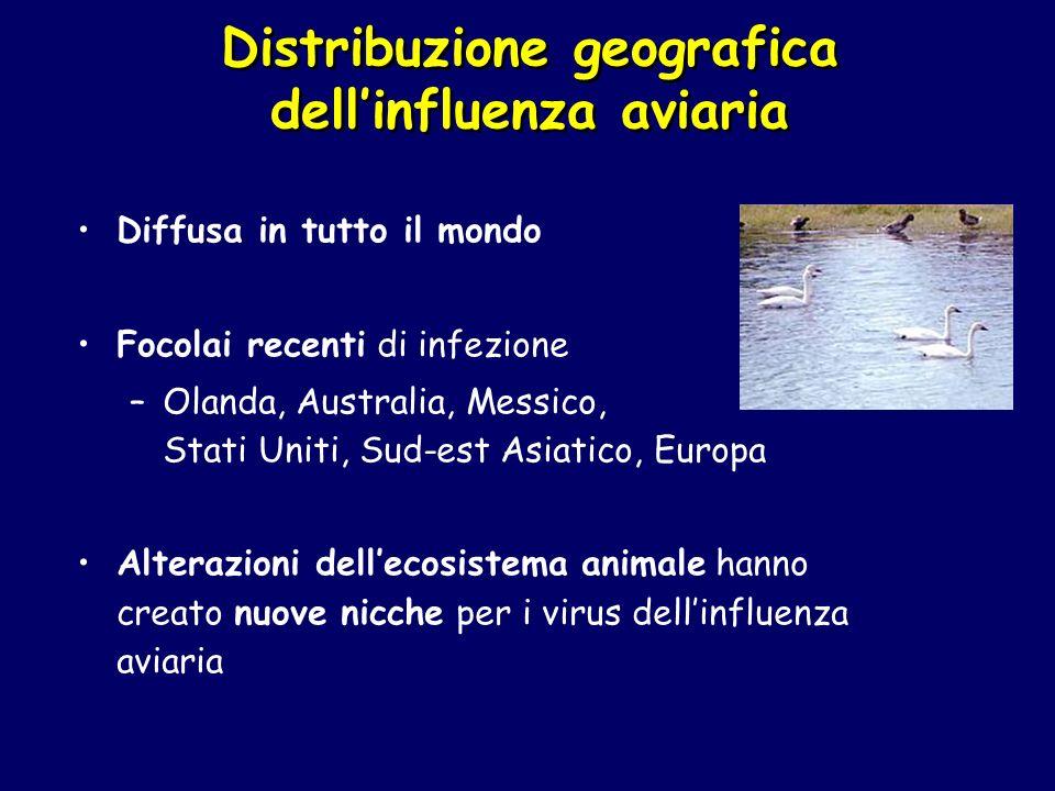 Distribuzione geografica dell'influenza aviaria
