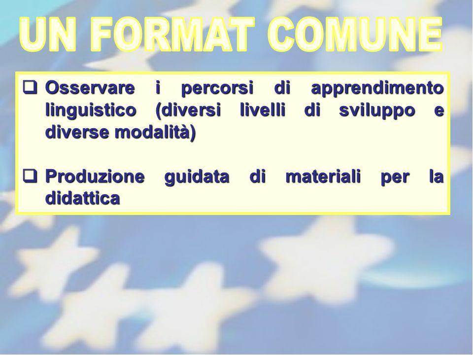UN FORMAT COMUNE Osservare i percorsi di apprendimento linguistico (diversi livelli di sviluppo e diverse modalità)