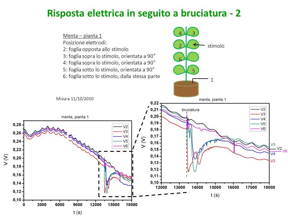 Risposta elettrica in seguito a bruciatura - 2