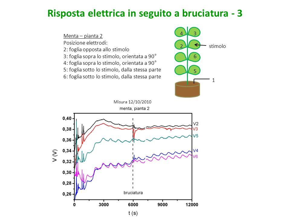 Risposta elettrica in seguito a bruciatura - 3
