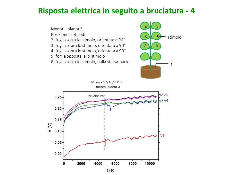 Risposta elettrica in seguito a bruciatura - 4