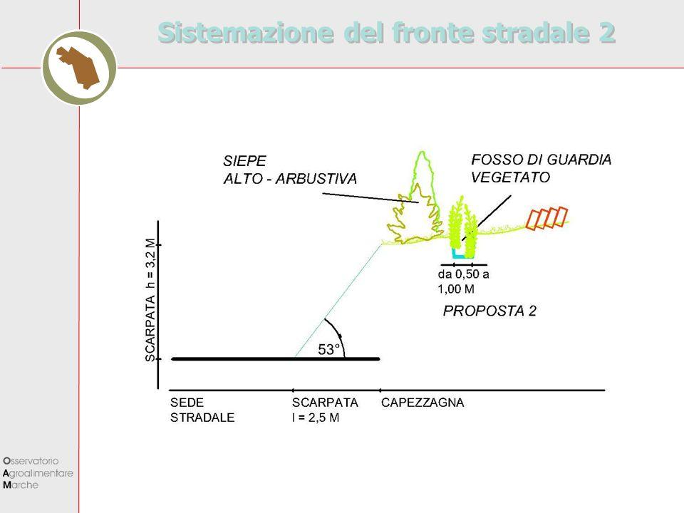 Sistemazione del fronte stradale 2