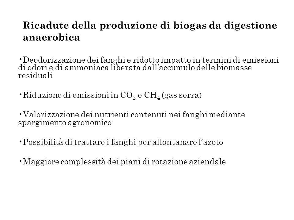 Ricadute della produzione di biogas da digestione anaerobica