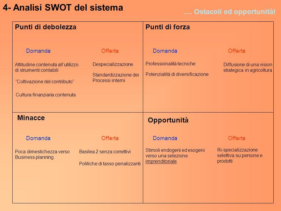 4- Analisi SWOT del sistema