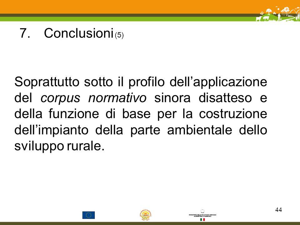 Conclusioni (5)