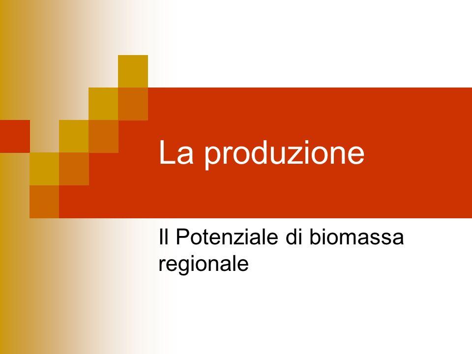 Il Potenziale di biomassa regionale