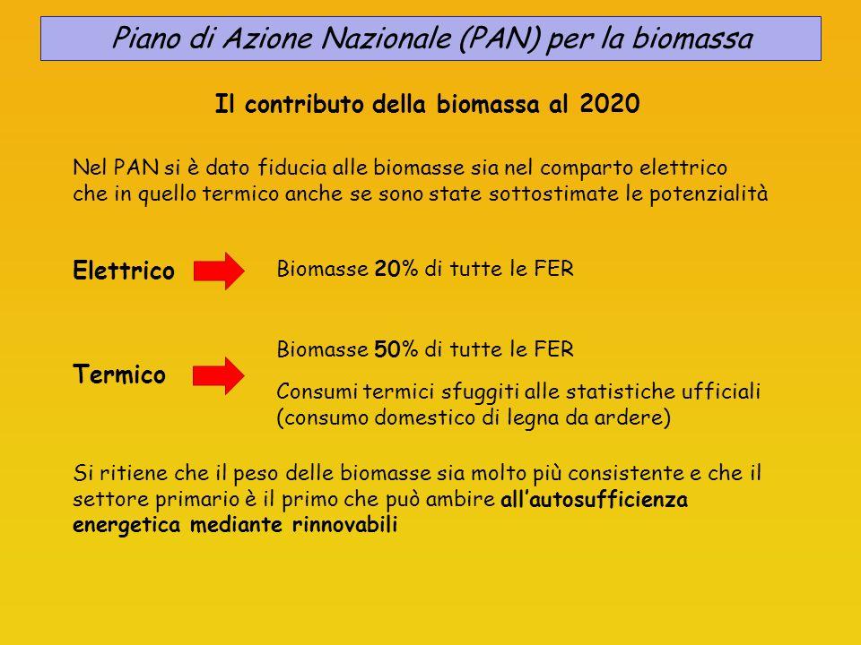 Piano di Azione Nazionale (PAN) per la biomassa