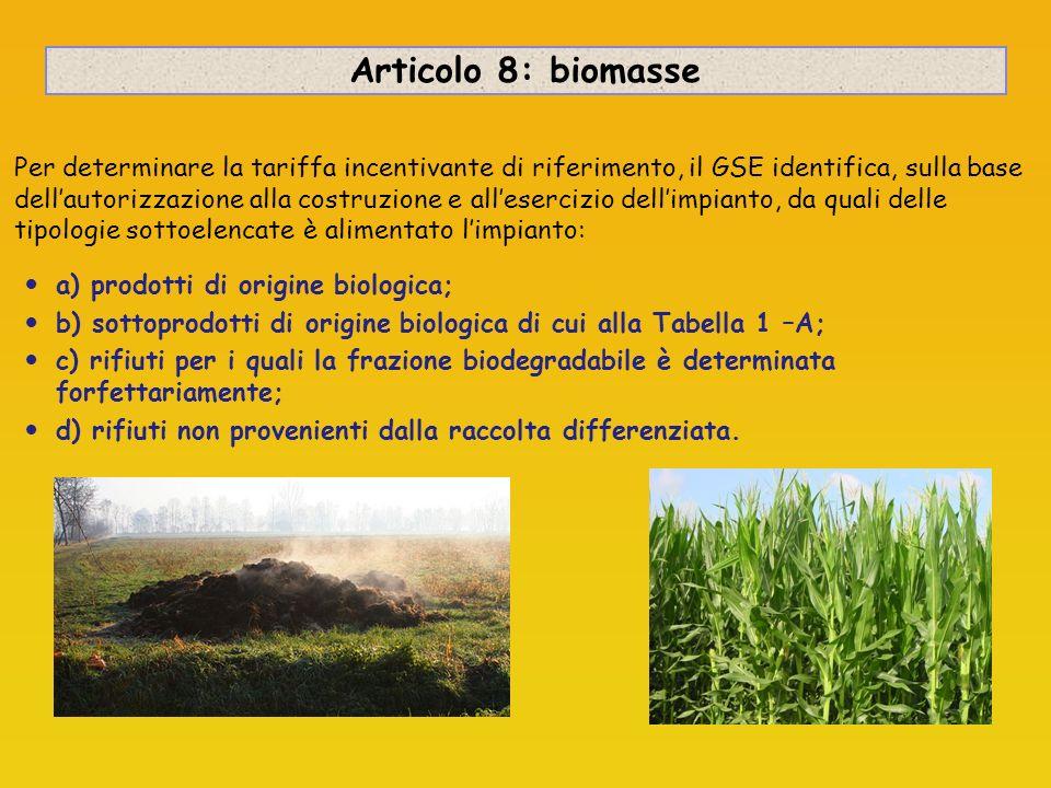 Articolo 8: biomasse