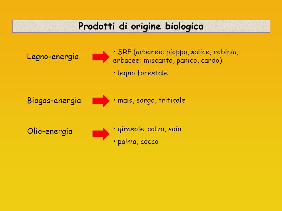 Prodotti di origine biologica