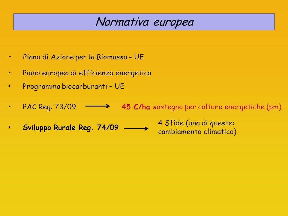 Normativa europea Piano di Azione per la Biomassa - UE