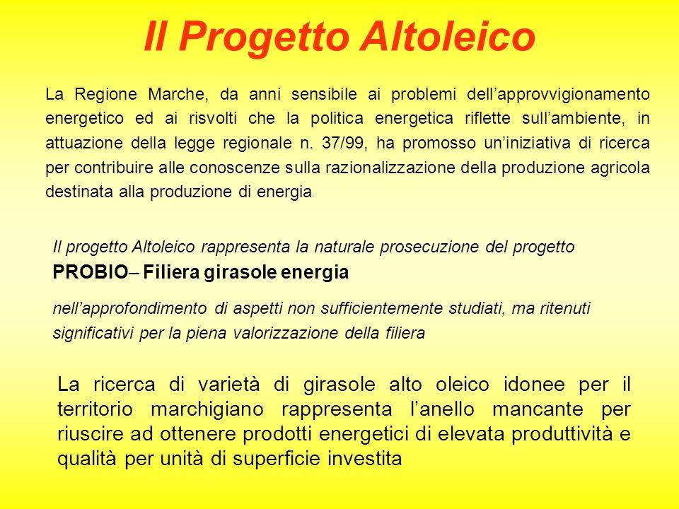 Il Progetto Altoleico