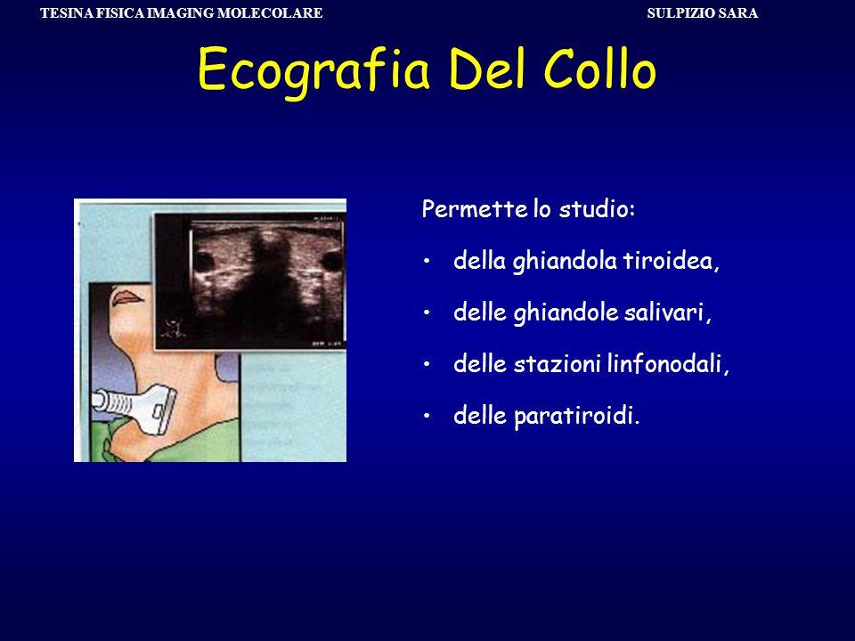 TESINA FISICA IMAGING MOLECOLARE