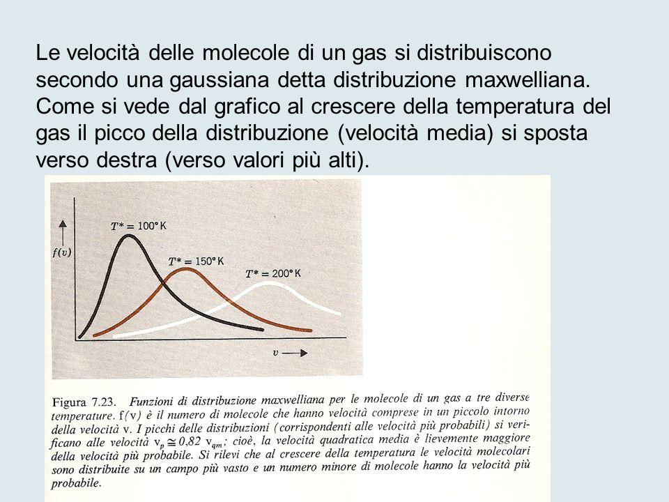 Le velocità delle molecole di un gas si distribuiscono secondo una gaussiana detta distribuzione maxwelliana.