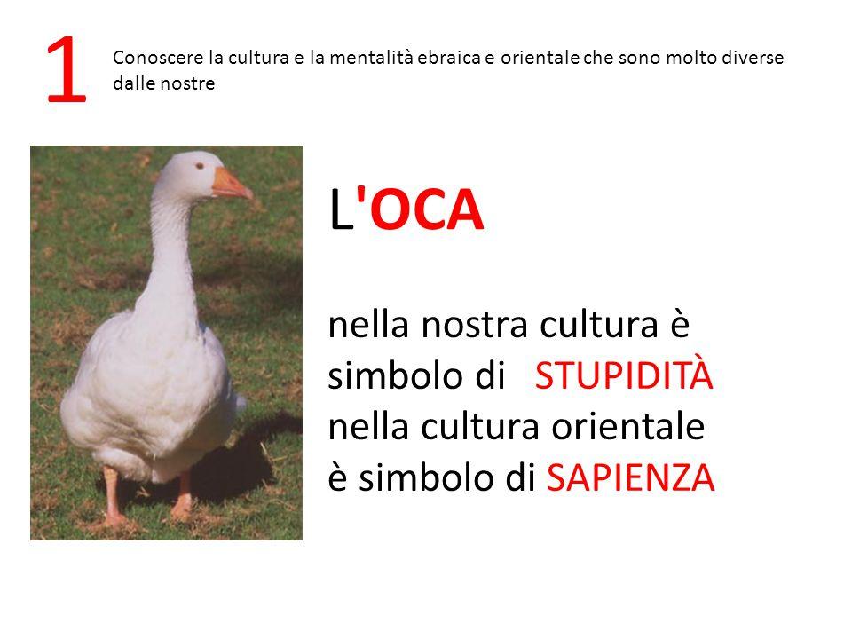 1 L OCA nella nostra cultura è simbolo di STUPIDITÀ