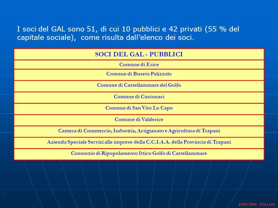 I soci del GAL sono 51, di cui 10 pubblici e 42 privati (55 % del capitale sociale), come risulta dall'elenco dei soci.