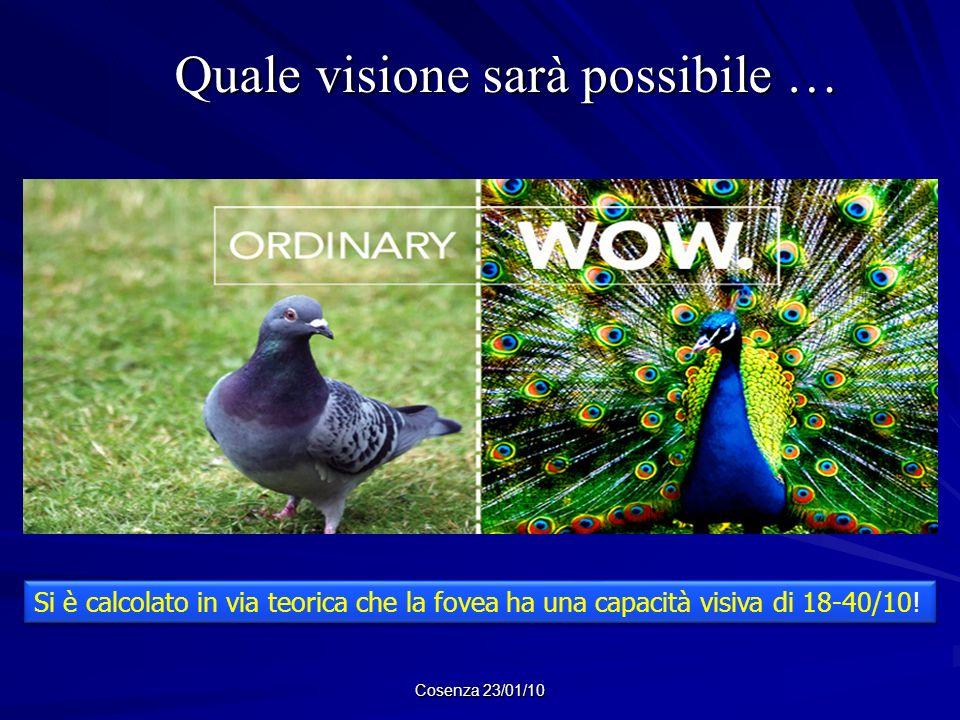 Quale visione sarà possibile …