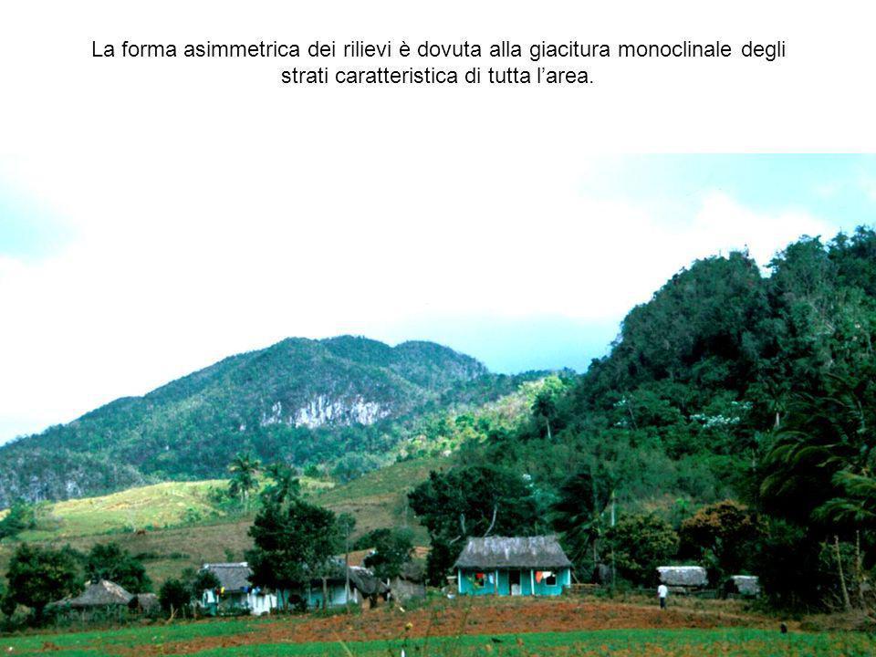 La forma asimmetrica dei rilievi è dovuta alla giacitura monoclinale degli strati caratteristica di tutta l'area.