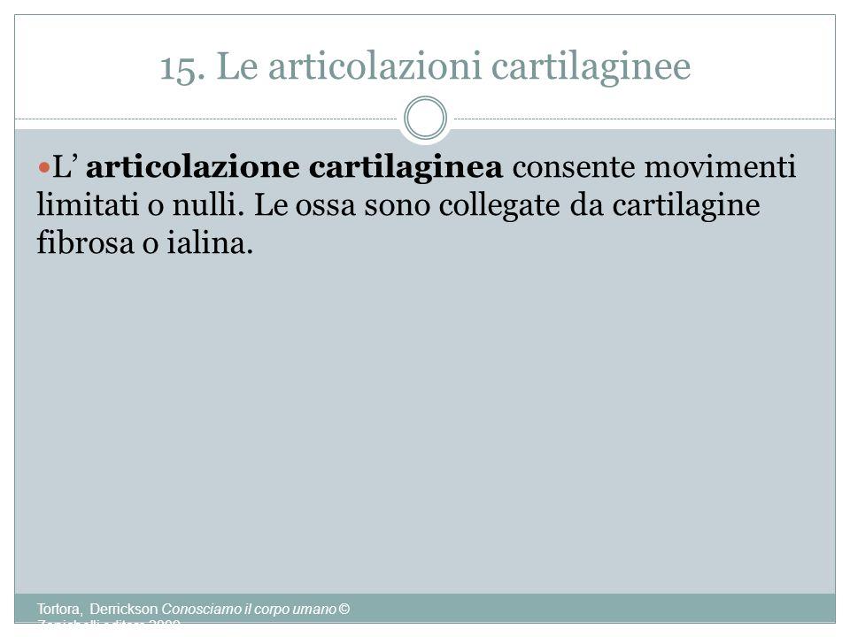 15. Le articolazioni cartilaginee
