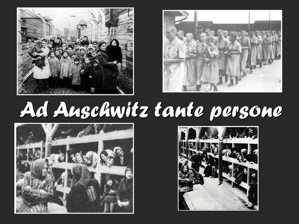 Ad Auschwitz tante persone