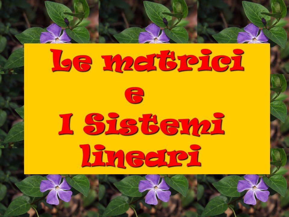 Le matrici e I Sistemi lineari