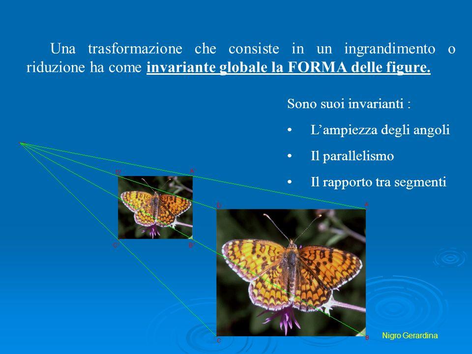 Una trasformazione che consiste in un ingrandimento o riduzione ha come invariante globale la FORMA delle figure.