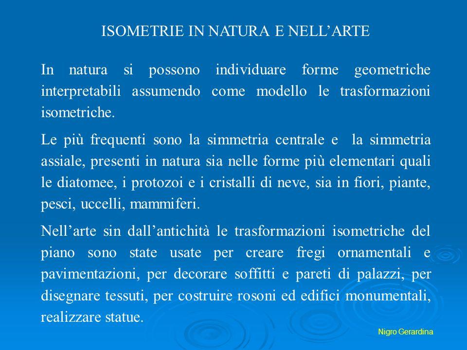 ISOMETRIE IN NATURA E NELL'ARTE