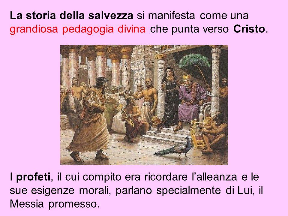 La storia della salvezza si manifesta come una grandiosa pedagogia divina che punta verso Cristo.