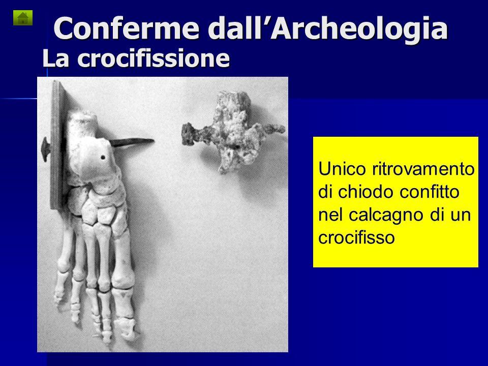 Conferme dall'Archeologia
