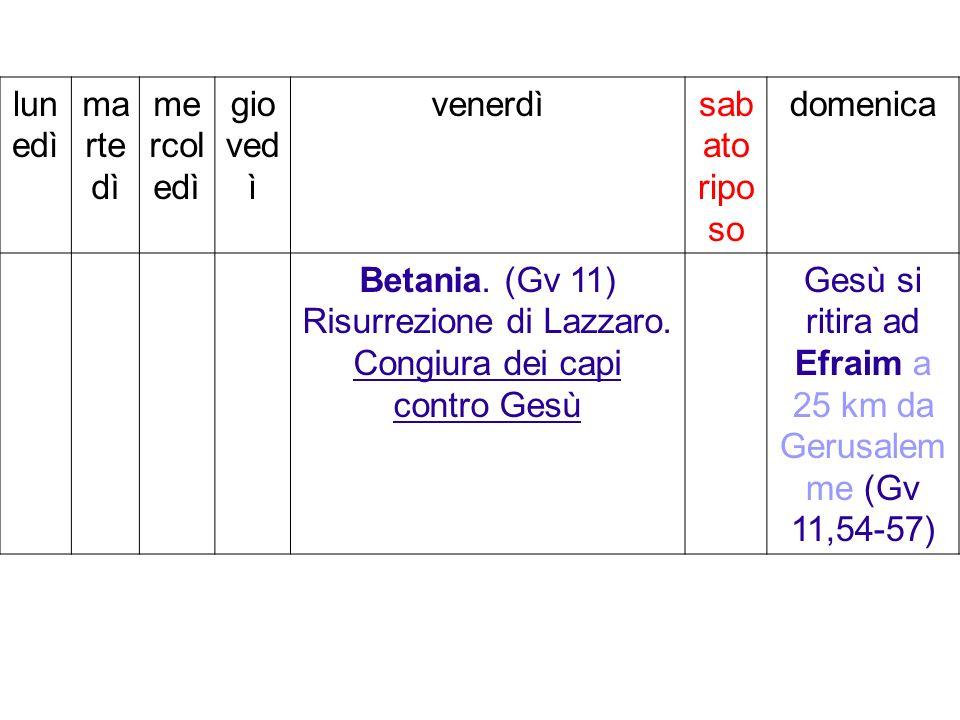 Betania. (Gv 11) Risurrezione di Lazzaro.