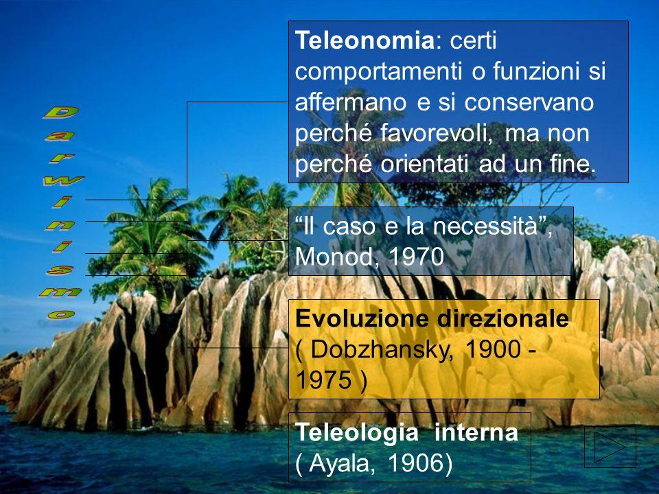 Teleonomia: certi comportamenti o funzioni si affermano e si conservano perché favorevoli, ma non perché orientati ad un fine.
