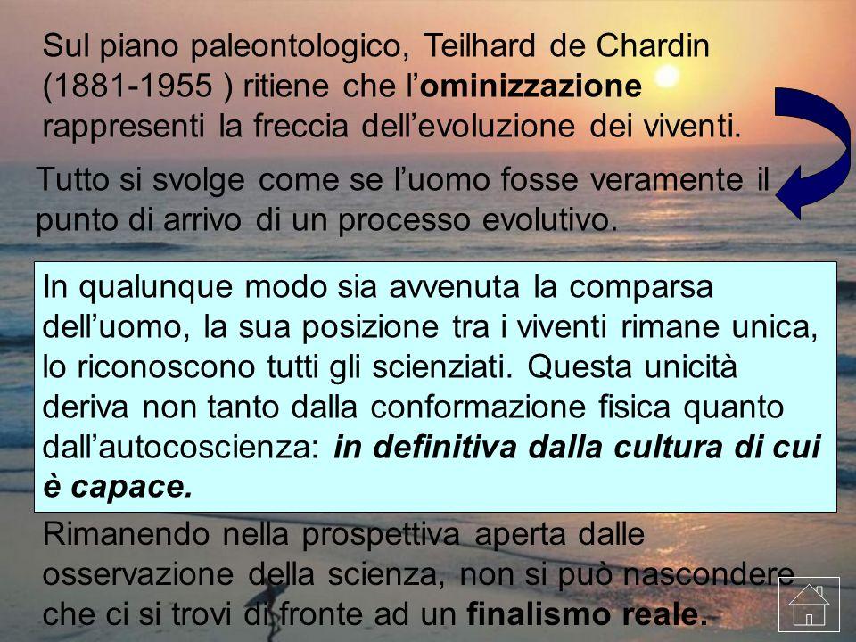 Sul piano paleontologico, Teilhard de Chardin (1881-1955 ) ritiene che l'ominizzazione rappresenti la freccia dell'evoluzione dei viventi.