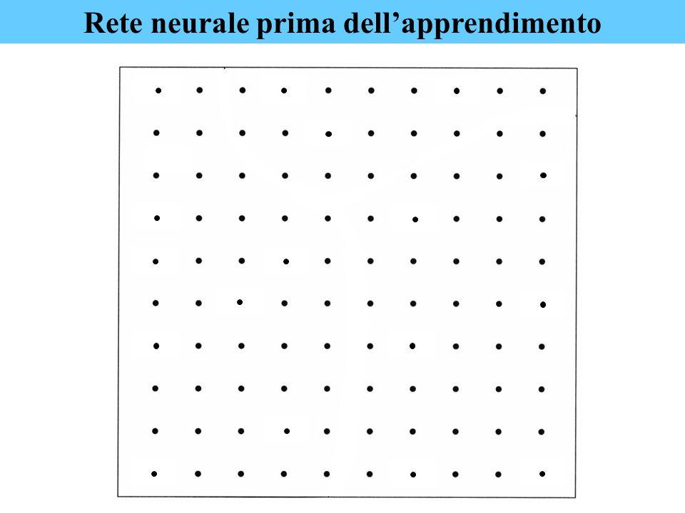 Rete neurale prima dell'apprendimento