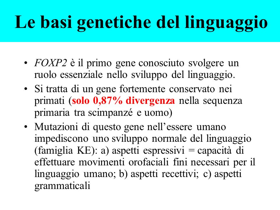 Le basi genetiche del linguaggio