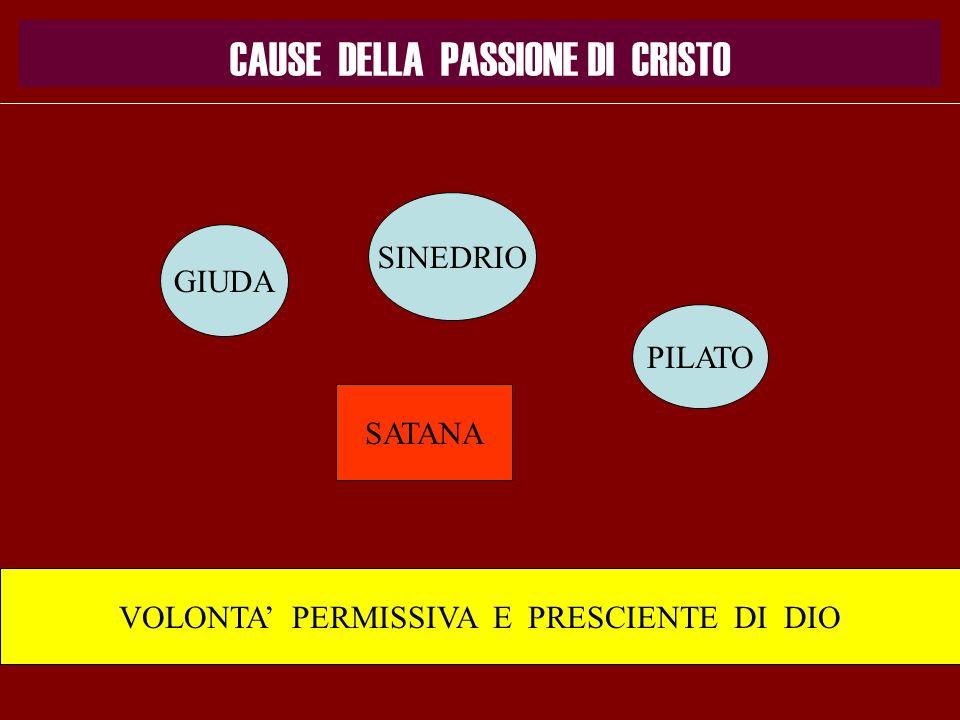 CAUSE DELLA PASSIONE DI CRISTO