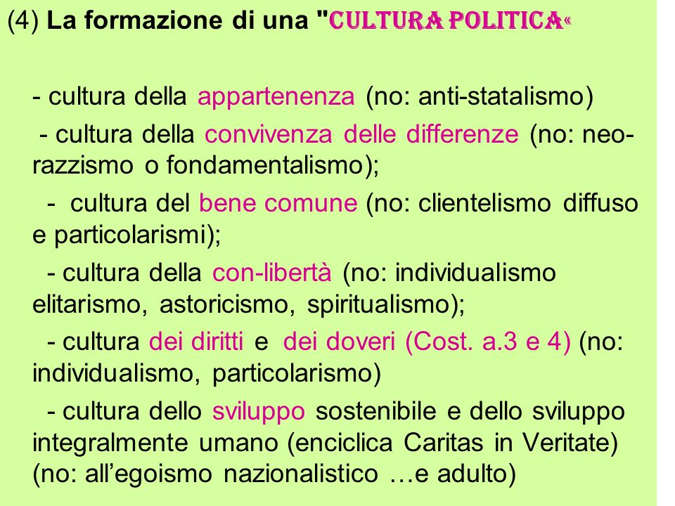 (4) La formazione di una cultura politica«