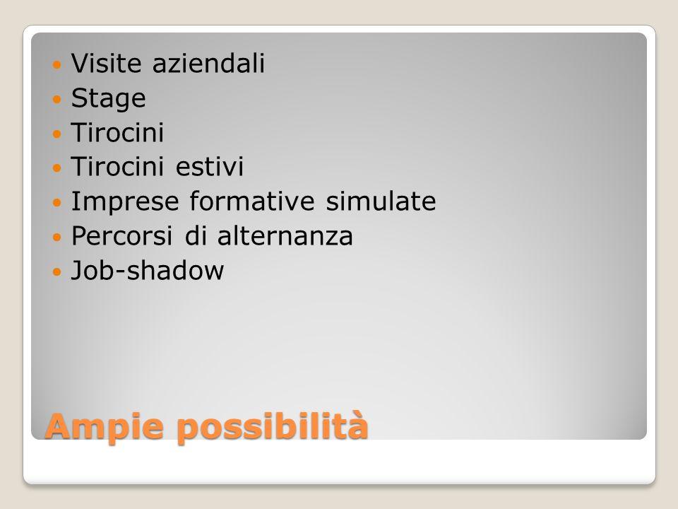 Ampie possibilità Visite aziendali Stage Tirocini Tirocini estivi
