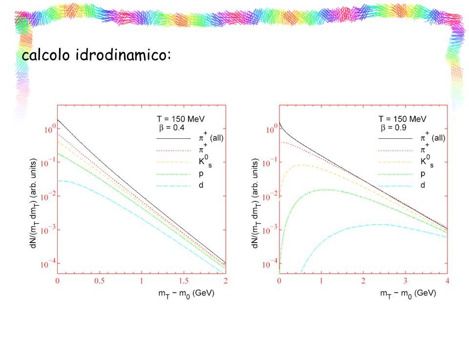 calcolo idrodinamico: